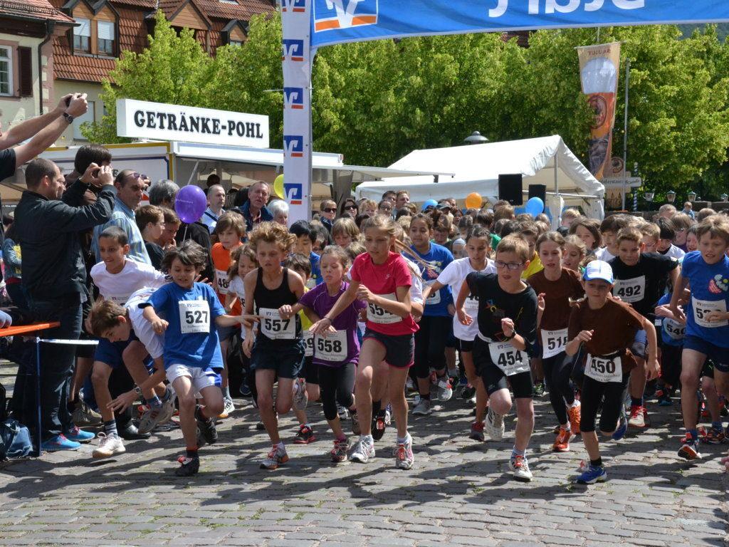 Altstadtlauf2013 (100)
